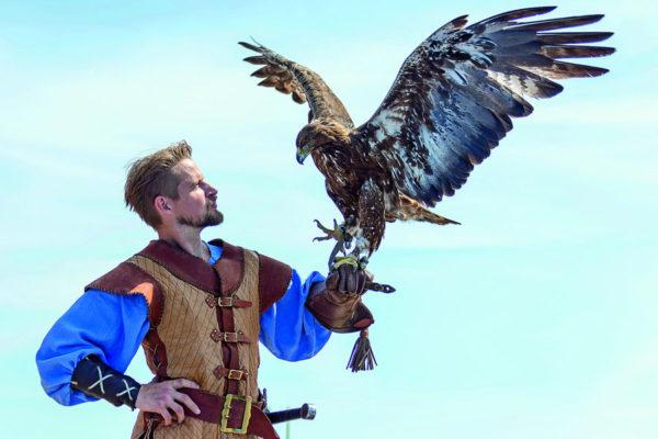 Schauspieler Bastian Semm bei Adlershow der Störtebeker Festspiele in Ralswiek auf Rügen