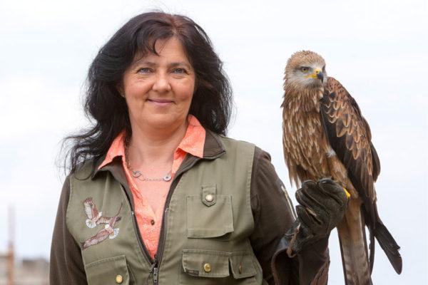 Falknerin mit Greifvogel der Störtebeker Festspiele in Ralswiek auf Rügen
